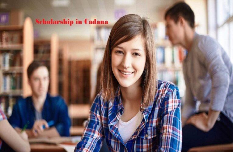 International Postgraduate Scholarship in Canada