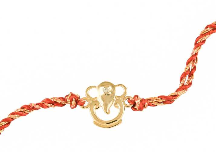 Rakhi 2021: How to Celebrate Rakhi If Your Brother Lives in the USA?