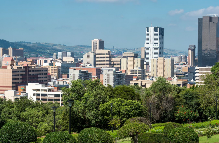"""Regional """"Call to Action"""" and Economic Planning in the Tshwane Metropolitan Municipality Considered"""