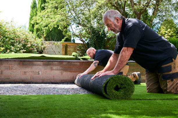 Tips to Choose Best Artificial Grass in Abu Dhabi