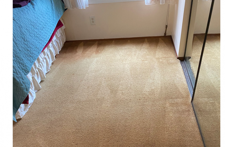 Common questions about professional carpet cleaning with answers
